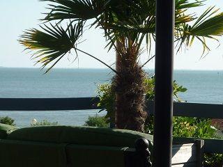 Uitzicht vanaf de woning  Villa 9477 Pornic