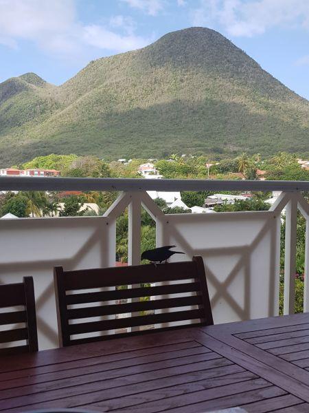 Uitzicht vanaf het terras  Appartement 84275 Le Diamant