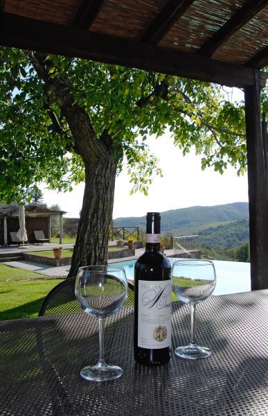 Uitzicht vanaf het terras  Vakantiehuis 65957 Siena