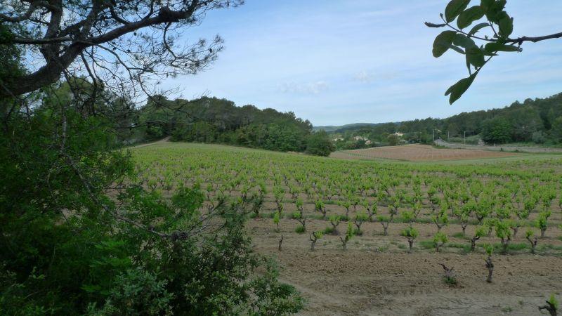 Zicht op de omgeving  Villa 115618 Lorgues