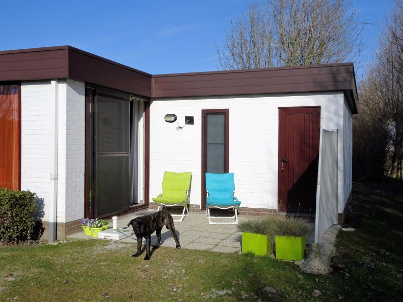 Terras  Bungalow 91436 Middelkerke