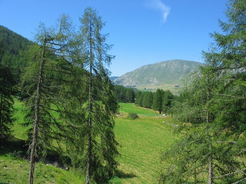 Uitzicht vanaf het terras  Chalet 69489 La joue du Loup
