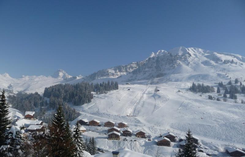 Uitzicht vanaf de woning  Chalet 1390 Le Grand Bornand