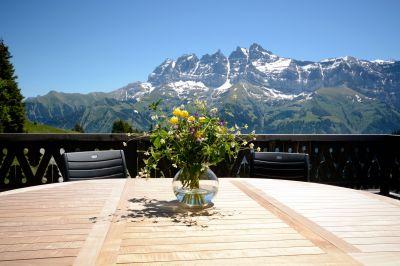 Uitzicht vanaf het terras  Chalet 14794 Les Crosets