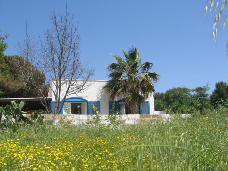 Huis 45348 Pescoluse