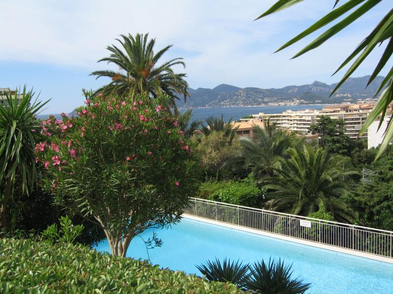 Zwembad  Appartement 62604 Cannes