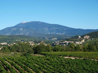 Uitzicht vanaf de woning  Vakantiehuis 81749 Vaison la Romaine