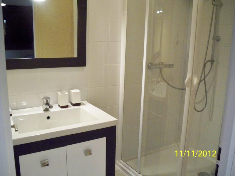 badkamer  Appartement 74513 Thollon Les Mémises
