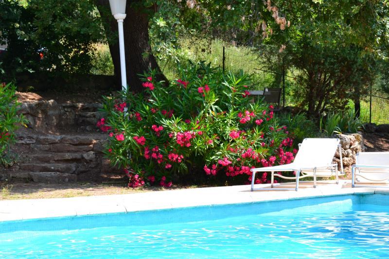 Zwembad  Appartement 74884 Fréjus
